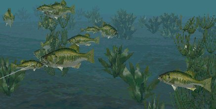 Trophy bass 4 free full download for Suttle fish farm